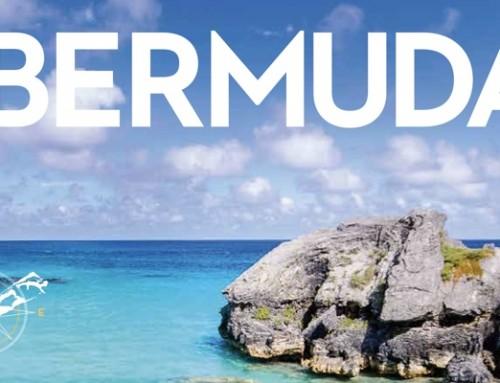 Trust Bermuda | STEP